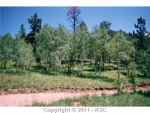 /crystal park in manitou springs district eagle mountain rd manitou springs co 80829 lot land 382687 photo 47