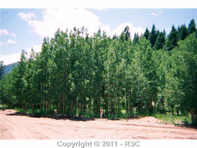 /crystal park in manitou springs district eagle mountain rd manitou springs co 80829 lot land 382687 photo 48