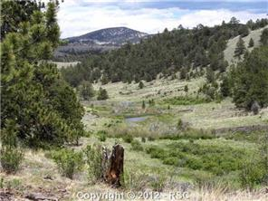 /broadmoor in broadmoor district pourtales rd colorado springs co 80906 lot land 694638 photo 35