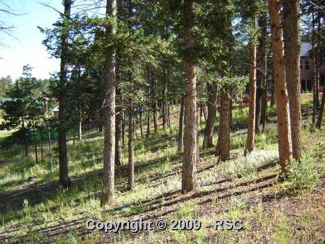 /crystal park in manitou springs district coffee pot rd manitou springs co 80829 lot land 782863 photo 38
