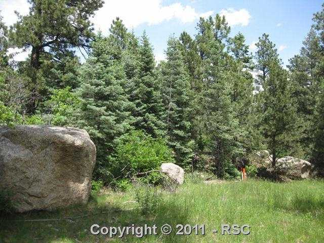 /stonecliff in broadmoor district paisley dr colorado springs co 80906 lot land 670816 photo 27