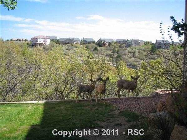 /stonecliff in broadmoor district paisley dr colorado springs co 80906 lot land 670816 photo 13