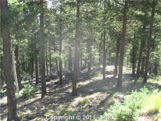 /crystal park in manitou springs district steep rd manitou springs co 80829 lot land 752651 photo 42